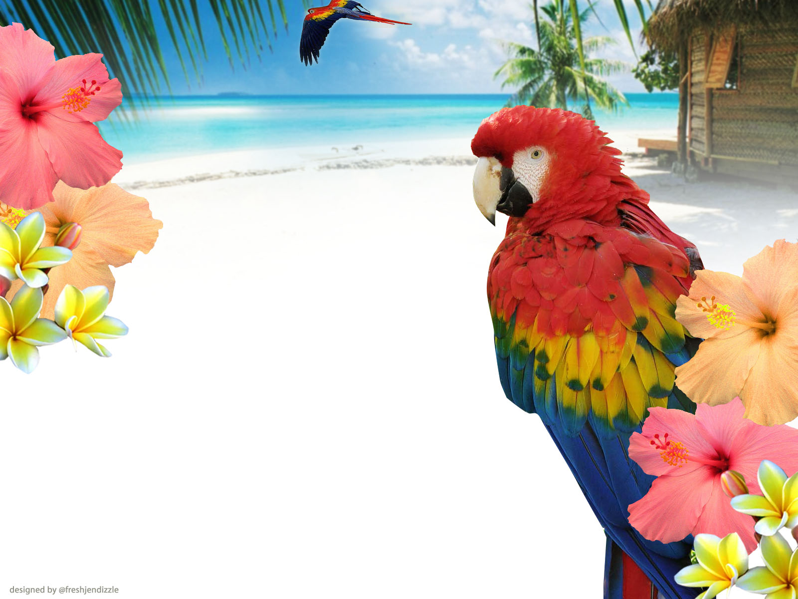 tropical twitter background free Free twitter wallpaper