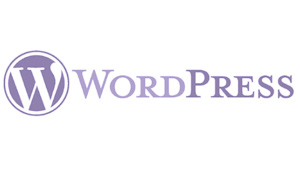 websites designed on the wordpress platform